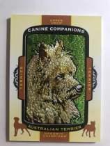 2018 UD Goodwin Champions CC105 Australian Terrier 小狗刺绣 澳大利亚梗