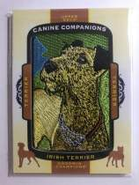 2018 UD Goodwin Champions CC116 Irish Terrier 小狗刺绣 爱尔兰梗