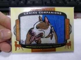 2018 Goodwin 古德温 刺绣 American Staffordshire terriers 凑套必备 稀少 大比例