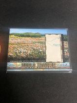 「老夫子」拍卖  999  GOODWIN 地图  切割    WT-109  那马夸兰 地区( Namaqualand )