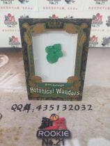 【新秀球星卡】卡淘代拍 2019 UD GoodWin 古德温 Botanical Wonders green hydrangea绿绣球 花卉标本 大比例【L】