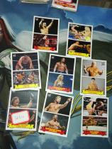 【1118】<<苏州卡通>> 残套 2012 WWE格斗 复古 特卡 8张不同一起,缺2张成套 各种传奇 好人 美女 (品如图)