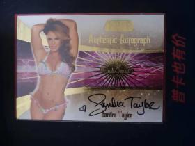 2006 Bench Warmer 金版 美女签名卡 Sandra Taylor