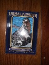 【馒头拍卖】goodwin 古德温 2019 动物刺绣 1:260 大比例 加利福尼亚海狮 凑套必备