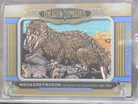 2016 古德温 物种起源 刺绣 OS 202 megazostrodon 大带齿兽 大比例 凑套必备