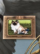 Z【DXG】<<苏州卡通>> GOODWIN 古德温 猫科动物刺绣 BIRMAN 伯曼猫又称缅甸圣猫 FC-17#(品见大图,上边有一点白边)